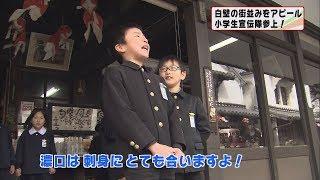 """画像:小学生が柳井の""""白壁の町並み""""をPR"""