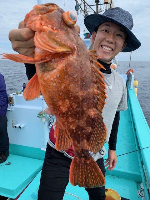 画像:高級魚パラダイス