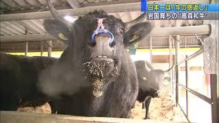 """画像:山口・岩国ファームで育った""""高森和牛""""が日本一に!"""